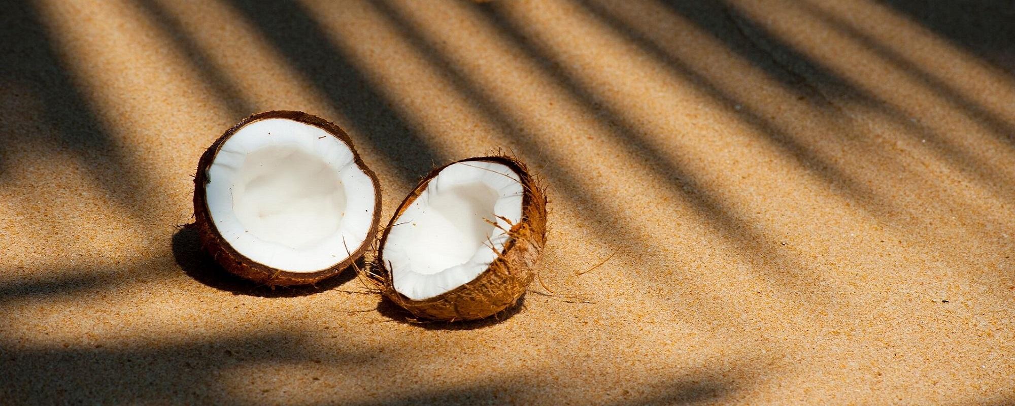 Mýty a fakty o kokose… je kokos zdravý?